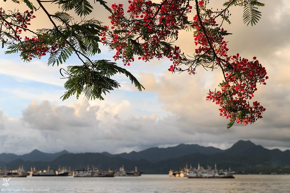 Fiji Melting Pot Of The South Seas