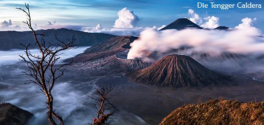 Reisebericht - Indonesien - Touri-Schlacht an der Tengger-Caldera