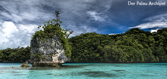 Reisebericht - Palau - Quallensee
